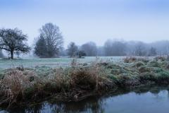 Wiesenlandschaft - Frost