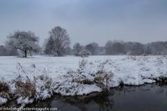 Wiesenlandschaft - Schnee