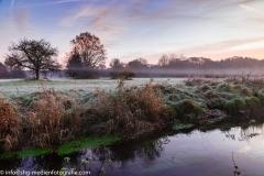 Wiesenlandschaft - Früher Morgen